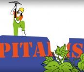 Massen wir uns an, den Kapitalismus zu überwinden